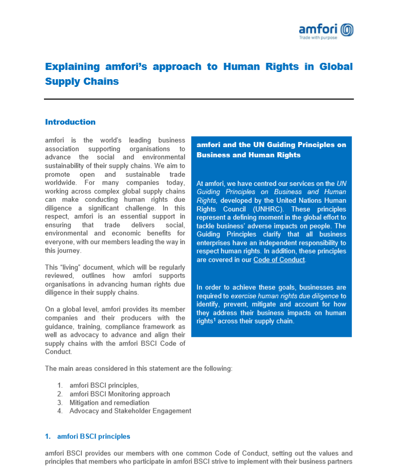 Explaining amfori's approach to Human Rights in Global Supply Chains