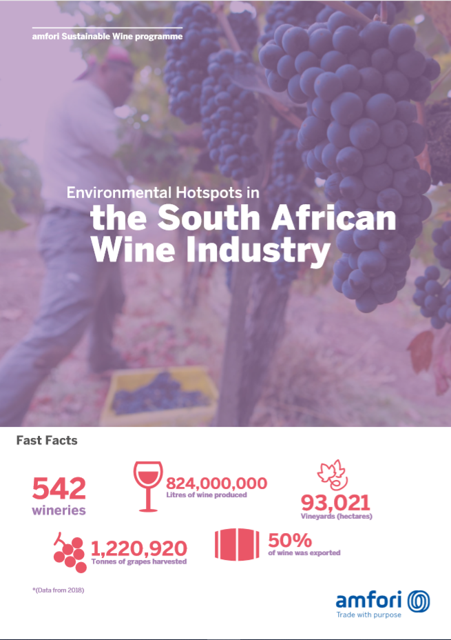 South African Wine report cover image