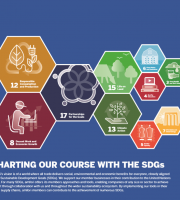 sustainable development goal infographic cover image